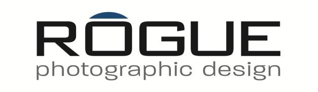 Rogue Logo White
